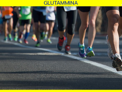 FB-glutammina News